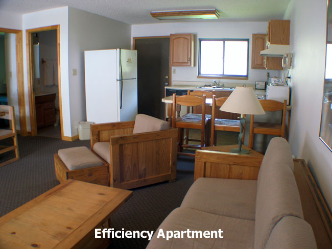 Four Seasons Lodge Efficiency Apartment